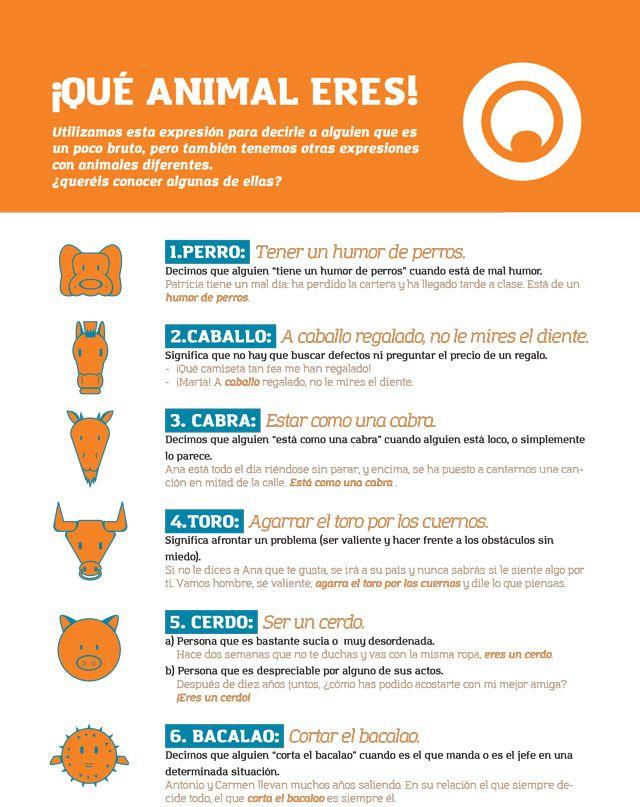 Expresiones en español con animales.